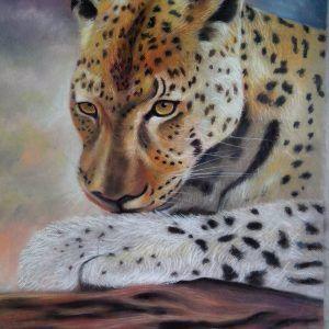 moises-hodge-leopardo-pastel-seco